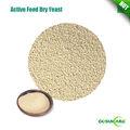 100% activo feed levadura saccharomyces cerevisiae