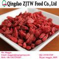 orgánica de goji berry semillas para la siembra