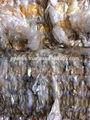 filme pp enfardado limpa grau a cor da mistura de sucatas de plástico reciclado