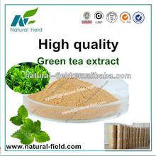 green tea extract manufacturer , tea polyphenols 98%