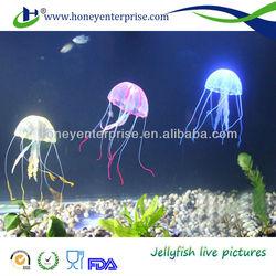 Beautiful fish tank with ornamental jellyfish