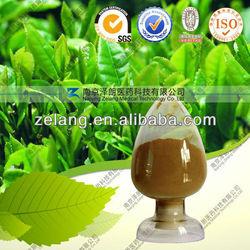 Green Tea Extract Tea Polyphenols 30%-98% Powder