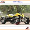 Race kart Go kart ATV 200cc Racing Quad Go kart 50cc 70cc 90cc 110cc 125cc 150cc 200cc 250cc