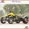 ATV 250cc Racing Quad Go kart 50cc 70cc 90cc 110cc 125cc 150cc 200cc 250cc