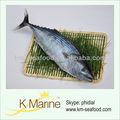 fruits de mer de thon sarda