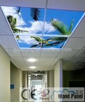 Hair salon decorative LED ceiling panel sky design