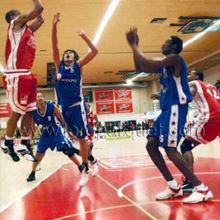 Holland Hertogenbosch, Eiffel Tower basketball hall