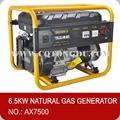 فتح الإطار مولد الطاقة الاحتياطية، 6500w 25l مولد الغاز الطبيعي