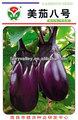 холодное сопротивление круглый черный фиолетовый баклажан семена- красоты баклаёаны нет. 8