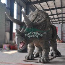 Sand Decoration for Rocking Animals in Playground