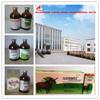 GMP manufacturer liquid dexamethasone injection for veterinary