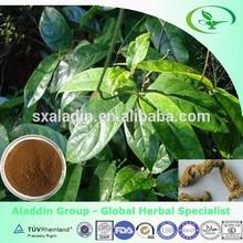 herb medicine food supplement Morinda officinalis extract