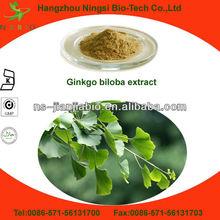 High Quality Ginkgo Biloba P.E