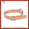 Fashion Variety Color fluorescent TPU dog collar