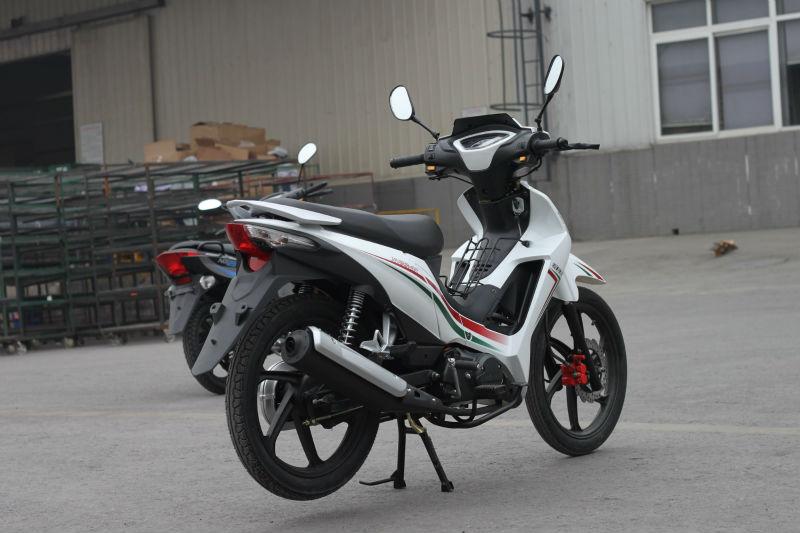 DUCAR 125cc cub motorcycle