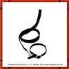 classic plain nylon dog collar with leash