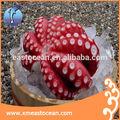 Polvo congelado para venda de polvo cozido, polvo congelado vivo, preço de fresh octopus