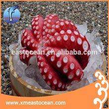 frozen octopus for sale of boiled octopus,frozen live octopus,price of fresh octopus