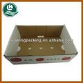 Carton ondulé boîte pour les fruits et légumes