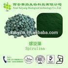 2014 Hot Sale Organic Spirulina powder bulk spirulina importers