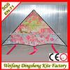 promotional delta kite customized kite