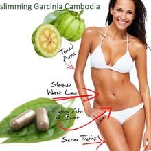 halal slimming garcinia cambogia extract/HCA60