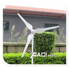 China Low Start-up 100W Permanent Magnet Horizontal Axis Wind Turbine (FD-SN-100W)