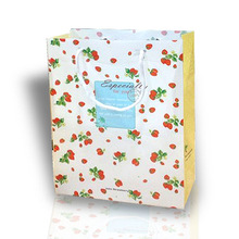 Cute eco-friendly craft paper shopping bag gift packing bog