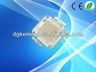 Roshs china manufacturer 100W led chip