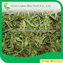 Stevia granular, stevia extract, stevia sweetener