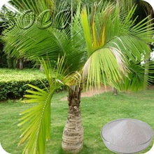 rubber tree sap super absorbent polymer sap for agriculture pine sap