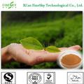 Extracto de té verde egcg en polvo, galato de epigalocatequina( egcg), egcg 95%
