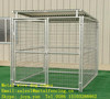 Animal protective cages folded dog cages galvanized dog cages metal wire dog cages