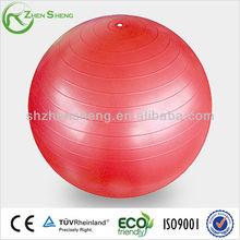 Zhensheng yoga ball gym