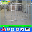 10'*10'*6' Chain Link Dog Cages / Dog Kennels