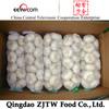 5.5cm Fresh Garlic Good Quality Garlic Bulk Garlic For Sale