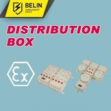 Explosion-proof Illumination(Power) Electrical Distribution Box,Power Distribution Box BXM(D)52