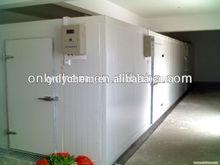 walk in gas chest freezer for breadfruit