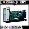 25kw Natural Gas Generator Gas Turbine Generator Price