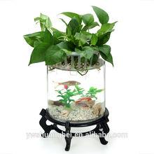 Beautiful Wooden Base Coffee Table Aquariums Fish Tank aquarium fish tank table