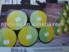 Forged round bars, black surface or peeled