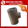Negro de acero al carbono accesoriosdetubería/tee