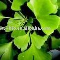24% Ginkgoflavoglycosides (Ginkgo biloba leaf extract)