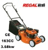 gasoline lawn mower RT-GLW20