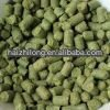 hops for beer production