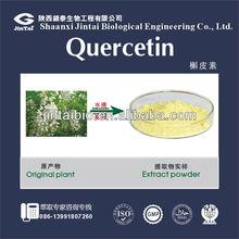 high quality UV 98% HPLC 95% quercetin extract