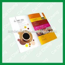 flyer printing witn color CMYK or PMS