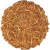 freeze dried mealworm bird food
