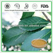 Loquat Leaf extract (Ursolic acid)