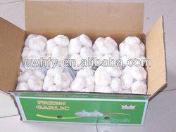 China garlic supplier in Shandong